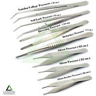 Dental Medical Cotton & Dressing Pliers Tweezers Soft Tissue Surgical Forceps