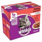 Whiskas Cat food in jelly-Meat-Fish&Meat-Fisherman Selection-Poultry-1+ and 7+