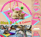 Pet Cat Dog Toy Activity Center Playing Tent w/4 Toys Fun House