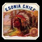 Indian Chief Cigar Label  c1910 -- Esonia Chief - 4 x 4 in - Genuine Original