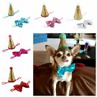 Birthday Cap with Bowtie For Small Dog Puppy Party Costume Hat Pet Headwear Gift