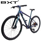 New 29er Carbon Mountain Bike 1*12Speed Complete Bicycles 142*12/148*12mm Boost