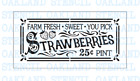 Summer Strawberries STENCIL for Painting Wood Signs Walls Canvas Fabric Reusable