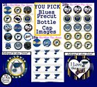 St Louis Blues NHL Hockey  team & Logos 15-150 Precut  Bottle Cap Image $17.95 USD on eBay