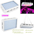 Safe Warm LED Grow Light Panel Lamp 1000W for Hydroponic Plant Full Spectrum