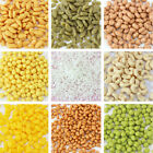 10g Clay Sprinkles for Filler Supplies Mud Decoration Toys for Children KPL image