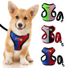 Mesh Padded Dog Harness with Leash Pet Nylon Puppy Vest for Small Puppy Dog Cats
