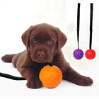 LN_ RUBBER BALL STRAP ROPE DOG CLEANING TEETH PET CHEWING BITE TRAINING TOY ST