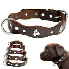 Brown Leather Small Dog Collar with Metal Studded Paw for Puppy Medium Dogs