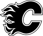 """Calgary Flames NHL Decal """"Sticker"""" for Car or Truck or Laptop $6.99 USD on eBay"""