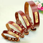 Genuine Leather Personalised Dog Collar Nameplate for Small Large Dog Brown XS L