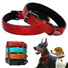 Leather Dog Collar Pet Dog Walking Training Padded Collars for French Bulldog