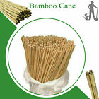 7ft 8ft Extra Strong Heavy Duty Professional Bamboo Plant Support Garden Canes