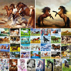Animal Horses Oil Painting DIY By Number Kit Acrylic Paint Wall Decor On Canvas