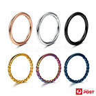 2pcs Hinged Rings Sleeper Surgical Steel Hoop Clickers Earrings Body Piercing