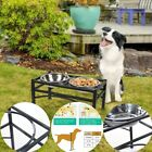 Raised Dog Cat 2 Stainless Steel Bowl Dishes Elevated Pet Feeder Stand Holder