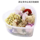 Real Dried Flowers For Art Craft Epoxy Resin Jewellery Soap Candle DIY Making US