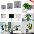 Self Watering Automatic Planter Flower Pot Home Office Desktop Plant Decor Uk