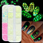 Glitter Flakes Manicure Butterfly Heart Nail Sequins Luminous Fluorescent