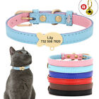 Soft Leather Pet Cat Collar with Engraved Personalized Name ID Fish Tag & Bell