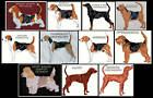 SCENT HOUNDS COUNTED CROSS STITCH PATTERNS