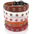 Brown Yellow Pink White Red Genuine Leather Gemstone Dog Collar  X-Smal Small M