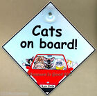 Cats on Board car art sign cat in car from original painting by Suzanne Le Good