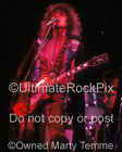 T Rex Photo Marc Bolan 16x20 Concert Photo in 1973 by Marty Temme 1A