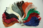 Vintage Feather Millinery Wing Hat Trim 5504 Austrian