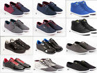 Latest Mens Designer Voi Jeans Shoes Canvas Plimsoles Footwear Pumps Trainers