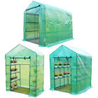 Polytunnel Greenhouse Poly Tunnel Steeple Green House With Shelves Steel Frame