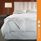 Luxury Hotel Style Primaloft Down Alternative Duvet Insert By DOWNLITE