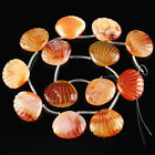 K59628 30x25x9mm Carved Agate conchoid loose beads 13pcs