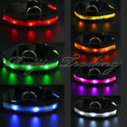 LED Dog Pet Collar Flashing Luminous Adjustable Safety Light Nylon Plain Tag