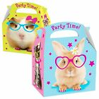 Girls Pets Dog Cat Rabbit Guinea Pig Bunny Kitten Puppy Party Loot Boxes Favour
