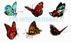 B171 ~ 6 Assorted Butterflies on Ceramic Decals 3 sizes to choose from Butterfly image