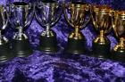 TROPHY WINNER CUPS cup X3 prize best charity school 1st