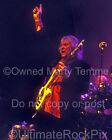 Chris Squire Photo Yes 11x14 Large Size Concert Photo by Marty Temme 1C
