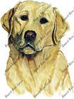 Yellow Golden Lab Labrador Retriever Home Office Room Camp Decor Decal Wall Art