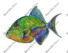 Queen Triggerfish Tropical Aquarium Ornamental Fish iPad eBook Decal Sticker Art