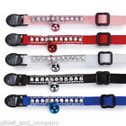RHINESTONE CAT COLLAR - Asst Colors Safety Breakaway Buckle w/ Bell