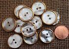 "12 Faux MOP Mother of Pearl Brass Tone Edge Buttons 13/16"" 20.5mm # 7359"