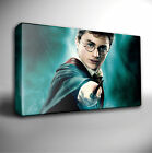 HARRY POTTER WAND GICLEE CANVAS WALL ART PRINT *Choose your size