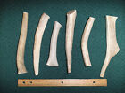 1 Pound Of Natural Elk Or Deer Antler Dog Chews, Chew, Antlers, Toys, Treats