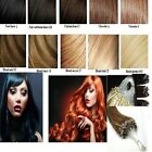 50/100/150/200 EXTENSIONS A FROID EASY LOOP CHEVEUX NATURELS LOOPS REMY 49-60 CM