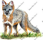 Grey Fox Sticker Decal Quality Wildlife Outdoor Nature Boating Camp Woods Hunt