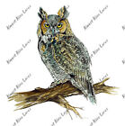 Horned Owl Bird Sticker Decal Home Office Dorm Exclusive Art Tablet CPU Laptop