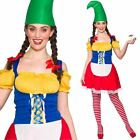 Adult Ladies Garden Cute Gnome Fairytale Pixie Storybook Fancy Dress Costume New