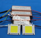 Real Watt COB High Power 10W 20W 30W 50W 220V 110V LED lamp Integrated Chip lamp