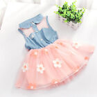 Infant Baby Girls Princess Tutu Dress Baby Kids Party Lace Flower Dresses 2-7Y